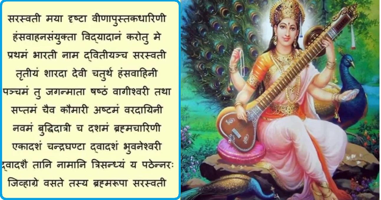 आज वसन्त पञ्चमी: विद्याकी देवी सरस्वतीको पूजा आराधना गरी मनाइदै